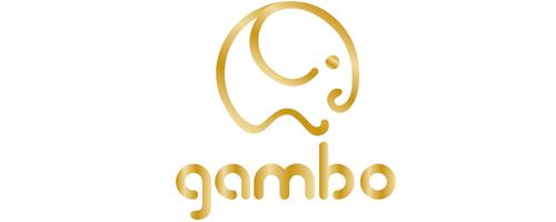 GAMBO PREMIUM SHOES